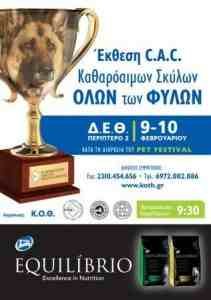 dog-show-thessaloniki-feb-211x300