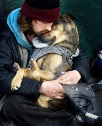 dog emotional 5