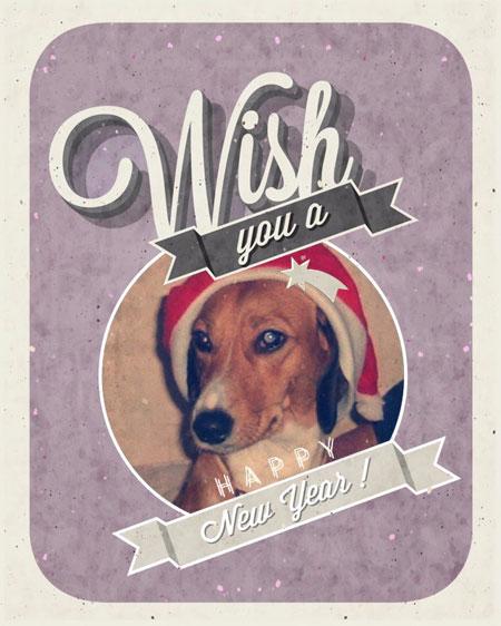 Χριστουγεννιάτικη συνταγή φριτάτα για σκύλους!