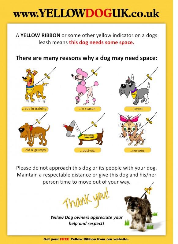 Τι σημαίνει κίτρινο σκυλί;