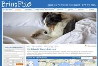 Pet friendly ξενοδοχεία κι όχι μόνο!