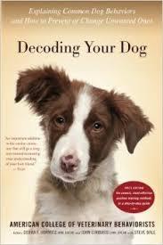 10 μύθοι γύρω από την συμπεριφορά του σκύλου