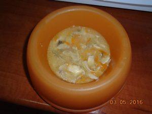 Συνταγή για κοτόσουπα για τις στομαχικές διαταραχές του σκύλου 3