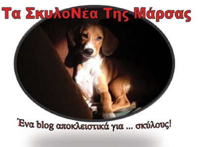 Basenji dog, ο σκύλος που δεν γαβγίζει (video)