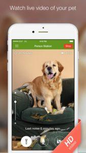 χρήσιμες εφαρμογές για σκύλους 9