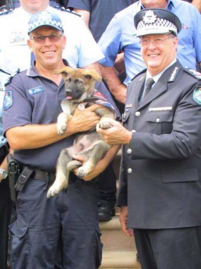 Αστυνομικός σκύλος απολύθηκε!
