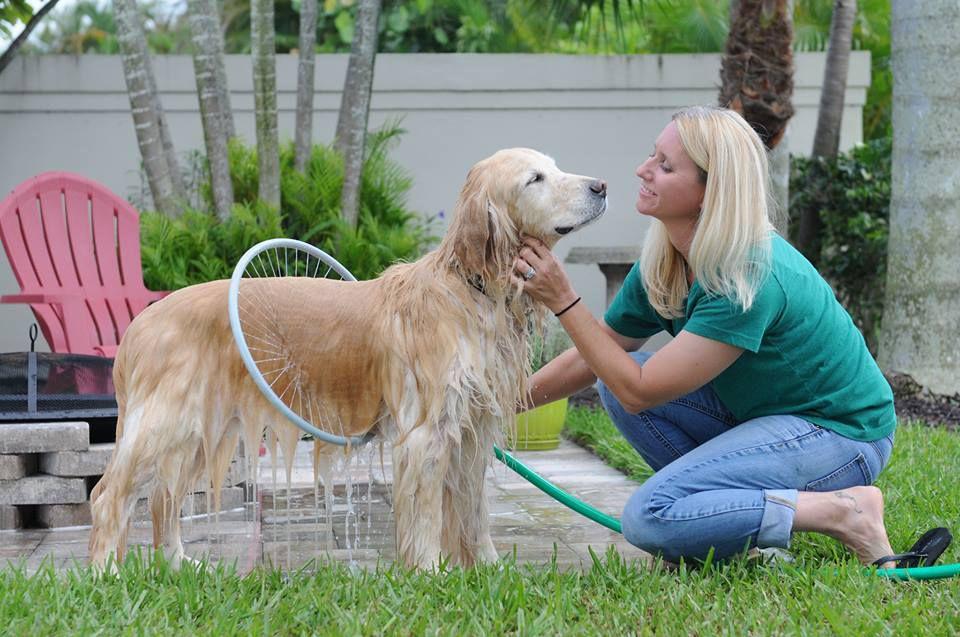 Ατομικό πλυντήριο για σκύλους!