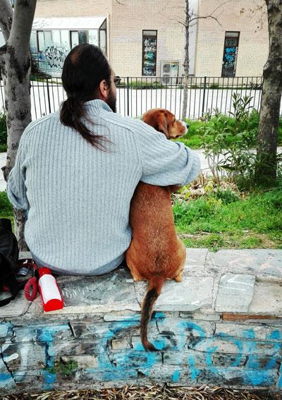 Σκυλιά προς ενοικίαση…