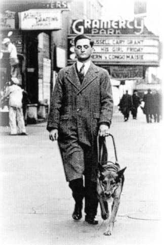 """Πώς και πότε """"ανακαλύφθηκε"""" ο πρώτος σκύλος οδηγός τυφλών;"""